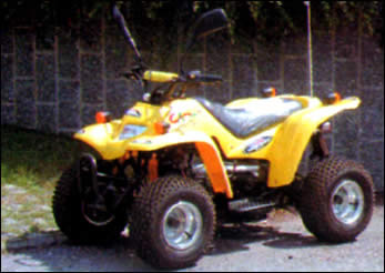 <b>Rent Elba Service Quad
