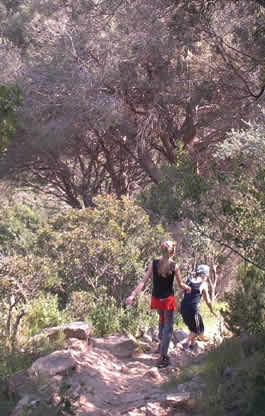 Trekking Elba sentieri parco