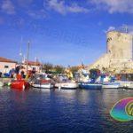 Imbarcazioni da pesca e la Torre di Marciana Marina