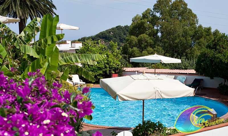 Piscina Hotel Gallo Nero