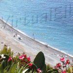 Spiaggia Colle di Palombaia
