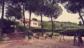 Ginestra Appartamenti Tallinucci a Lacona