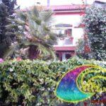 Elba Agriturismo Appartamenti Provenzali